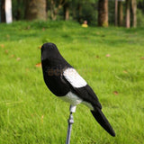 Realistic Magpie Decoy Hunting Bait Shooting Trap Pest Control Garden Scarer Scarecrow