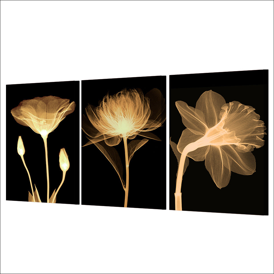 HD Print 3 Piece Canvas Art transparent Flower Black Painting Wall Picture