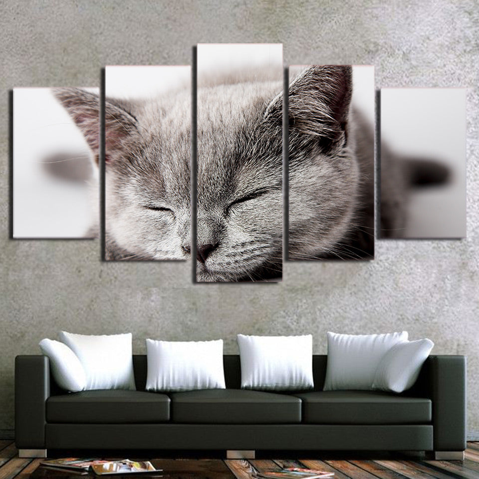 Canvas Wall Art Pictures HD Printed Cute Animal Painting Modern 5 Pieces Sleeping Gray Cat Poster