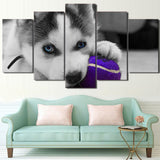 Modern HD Printed Poster Canvas Art 5 Pieces Wall Art Blue Eyes Husky Painting Dog Ball Play Modular Pictures