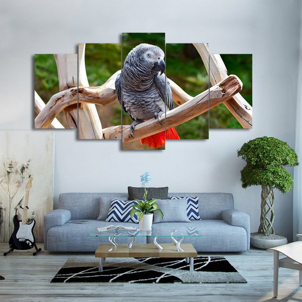 HD Printed 5 Piece Canvas Art Animals Parrot Art Painting Wall Pictures