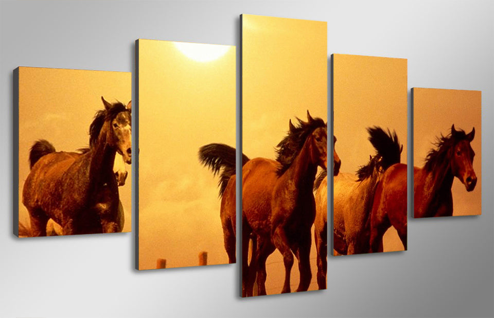 HD 5 piece Canvas Art Printed Horse Painting On Living Room Wall Art