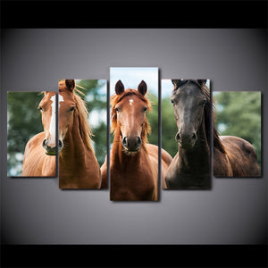 Wall Art Canvas Painting 5 Piece HD Print Brown Horse Race Posters and Prints  Animal Canvas Art Home Decor