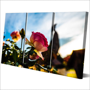 3 Piece Canvas Art HD Print Flower Canvas Painting Blooming Paintings Living Room Wall