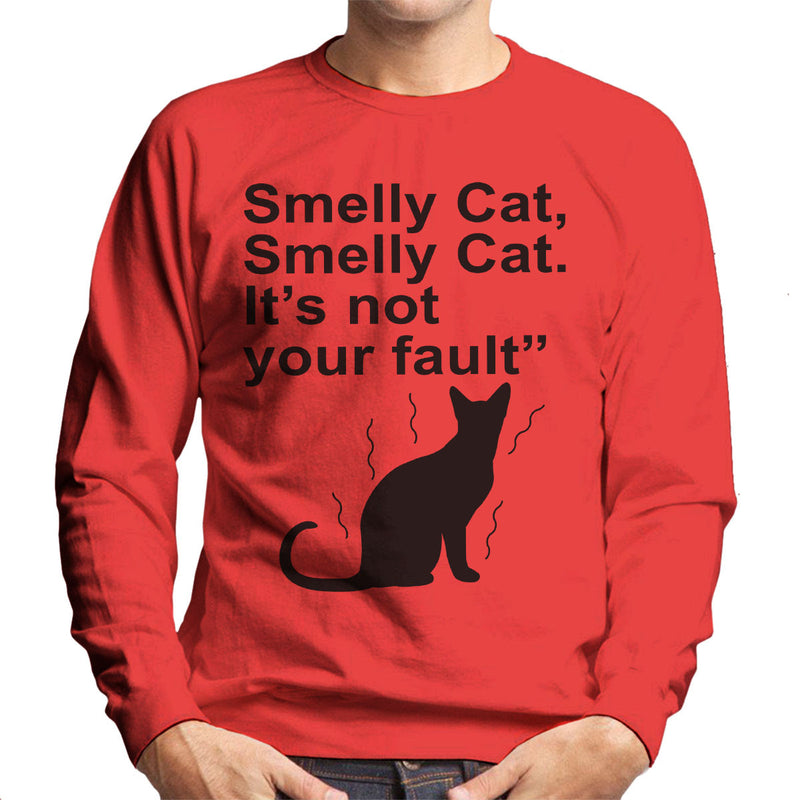 Friends Inspired Pheobe Quote Smelly Cat Men's Sweatshirt - NME Merch