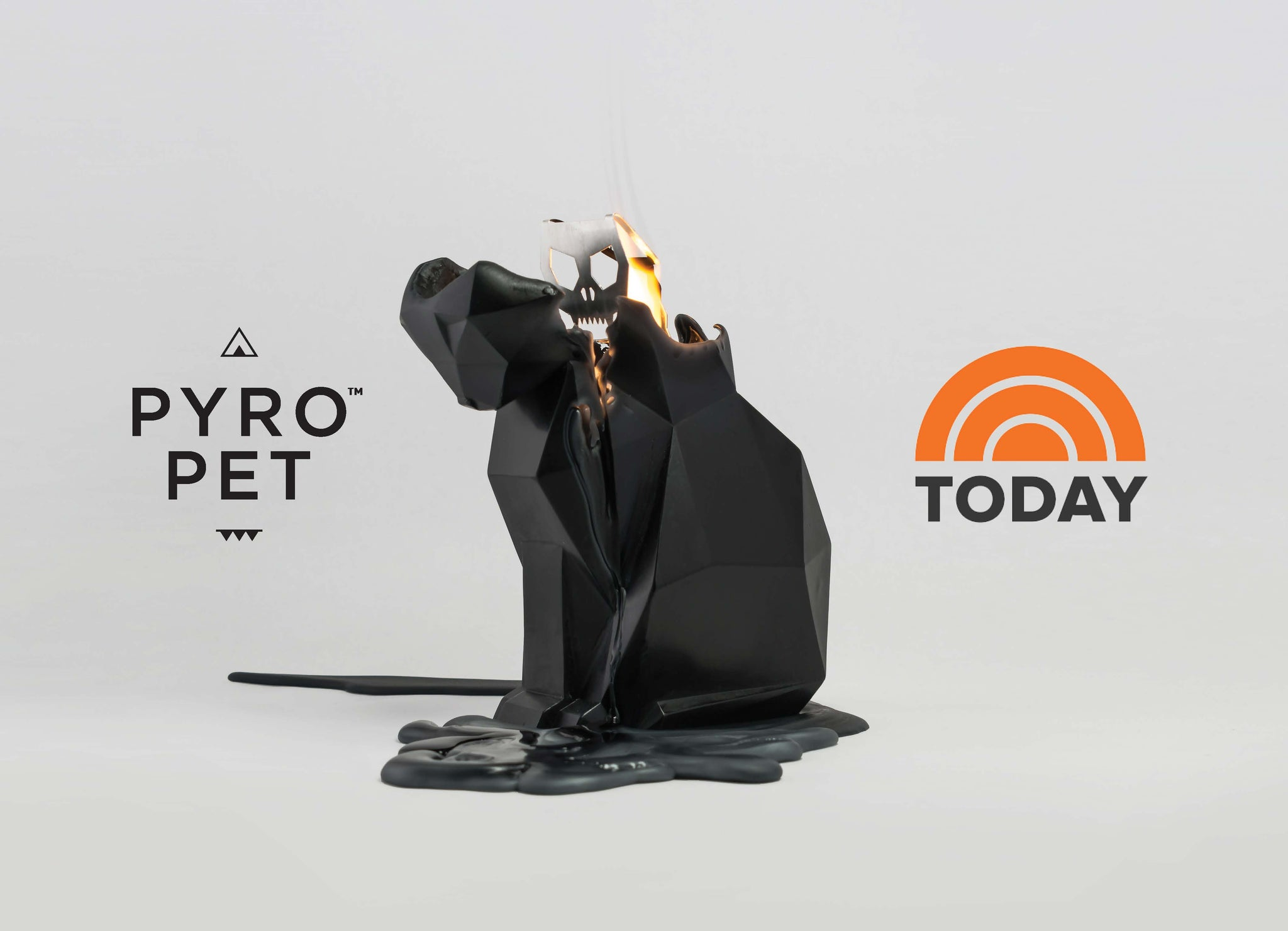 Don't Miss Pyropets on The Today Show 10/13/2017