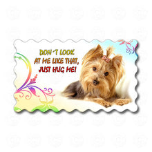 Yorkie - Don't look at me like that, Just hug me