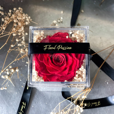 Everlast - Single Stalk Preserved Rose + Dried Baby Breath Acrylic Box