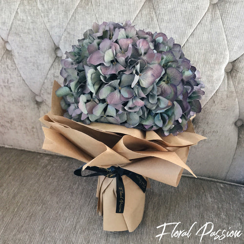 One Sweet Love - Hydrangeas