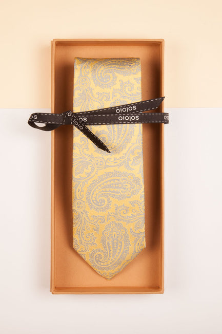 BASIC BOX PAISLEY AMARILLO