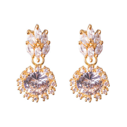 Stylish zircon earrings