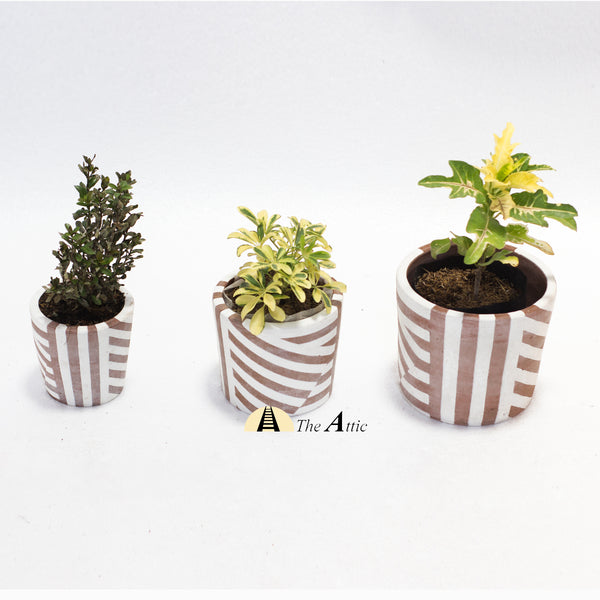 Agra Terracotta Flower Pot - TheAttic-Dubai.com