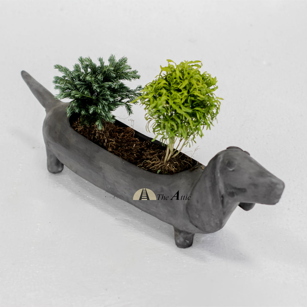 Bella Terracotta Sausage Dog Planter, Grey