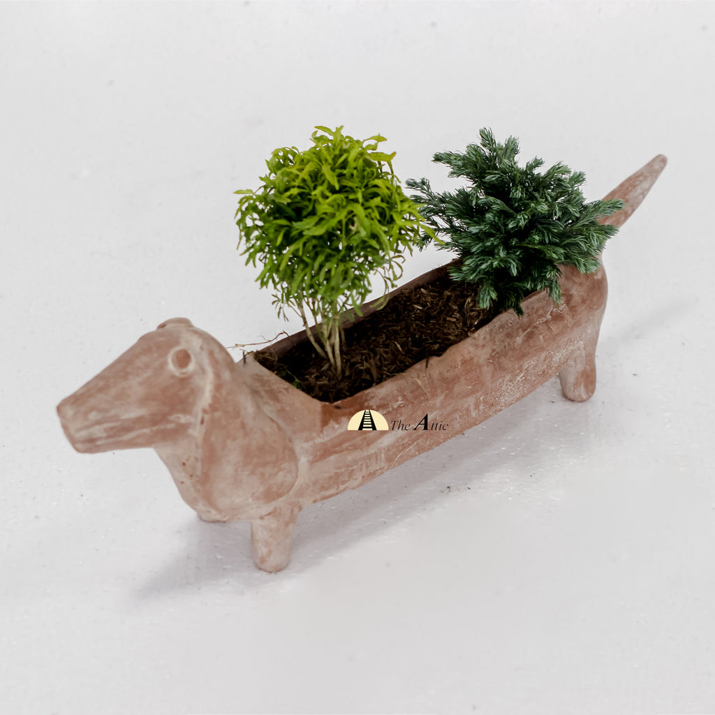 Bella Terracotta Sausage Dog Planter, Natural