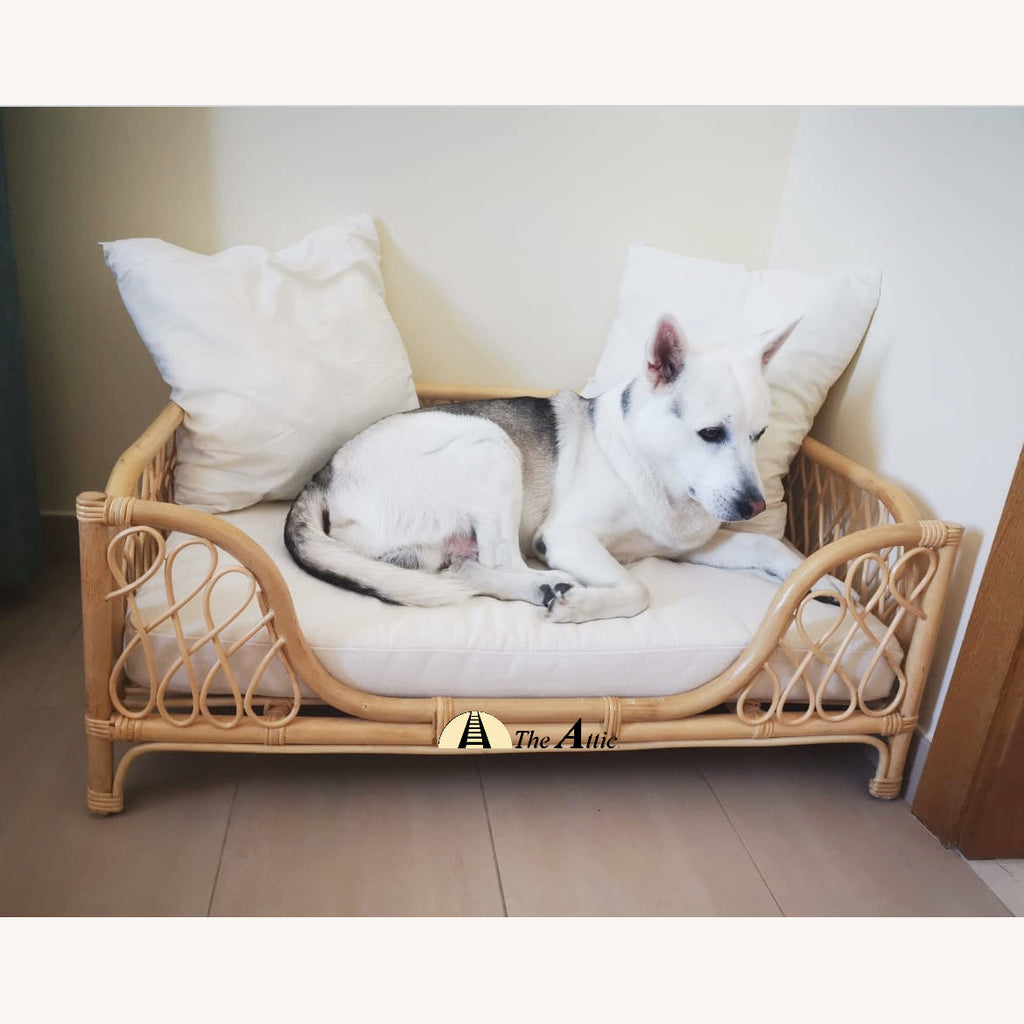 Buddy Rattan Dog Bed, Stylish Pet Bed - The Attic Dubai