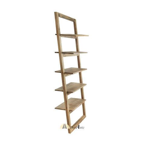 Modern Minimalist Leaning Ladder Shelf