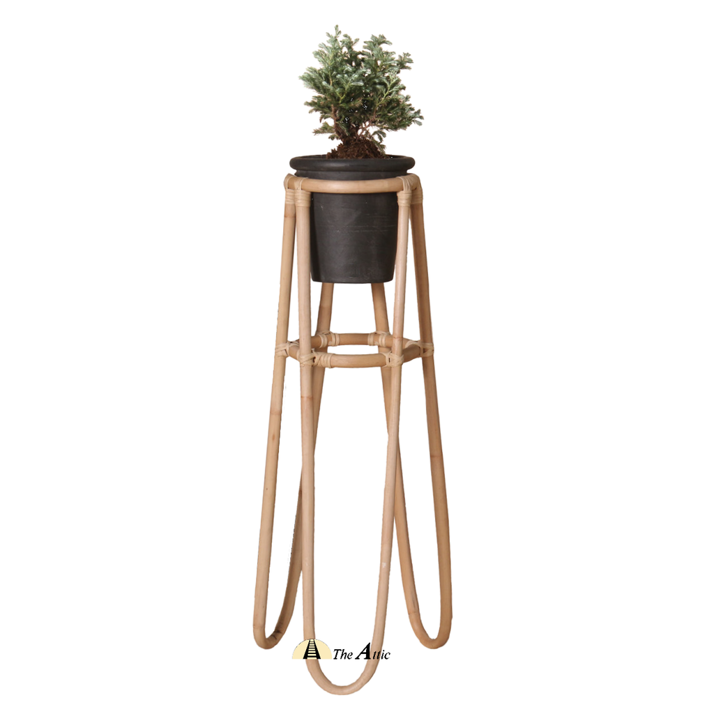 Tall Rattan Planter, Natural with Black pot - TheAttic-Dubai.com