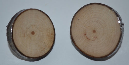 Log Slice Earrings-Round