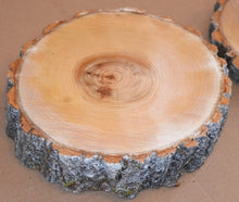 "Aspen Wood Slices 9"" to 11"" diameter x 1"" thick Package of 4. Wholesale"