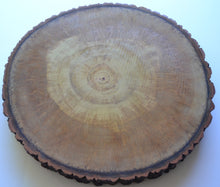 "Aspen Wood Slice  16 "" to 18 1/2"" x 2"" Thick"