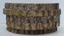 "Balm of Gilead Wood Slices 9"" to 11"" diameter x 1"" Package of 5. WholeSale"