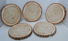 "Balm of Gilead Wood Slices 11 1/2"" to 12 1/2"" diameter x 1"" Package of 5. WholeSale"
