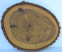"Rustic Wood Slice Cutting Board, Serving Tray, Cake Stand,or Center Piece 13 1/2"" to 16"" With Hand Rubbed Food Safe Oil Finish"