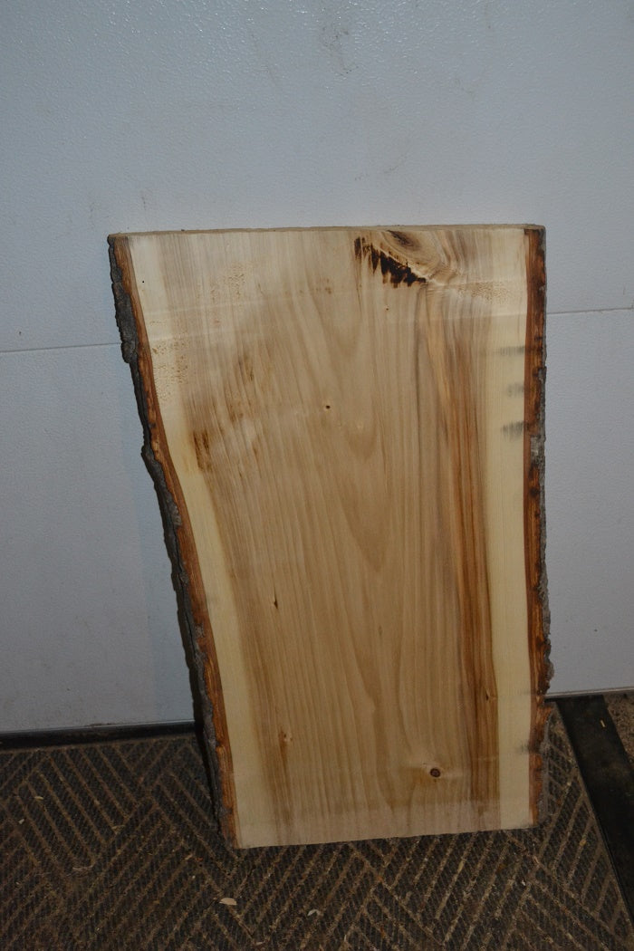 Live Edge Slab with bark  BOGLE-301 (SOLD)