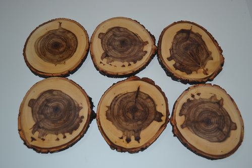 Balm of Gilead Log Coasters Set of Six