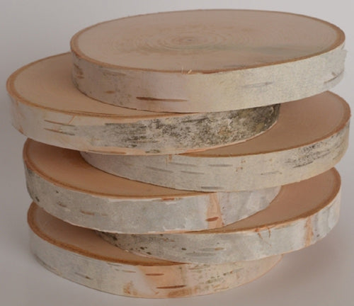 Birch Log Wood Slices 4 1/2