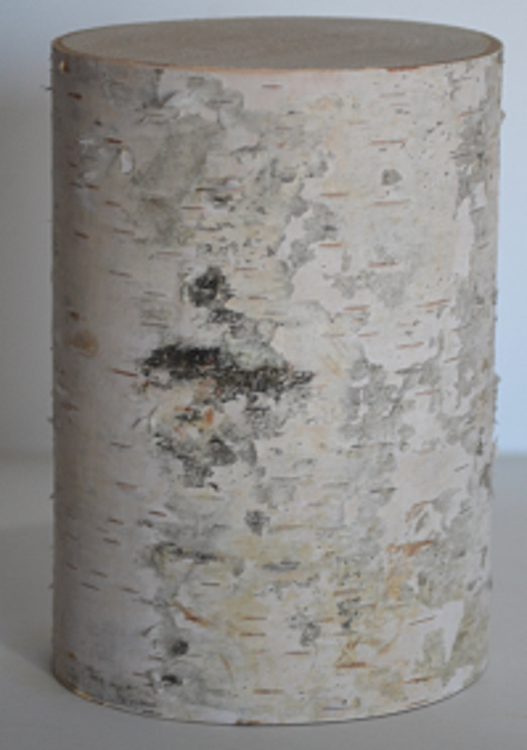 White Birch Pillars-(Set of Five) 3 1/2