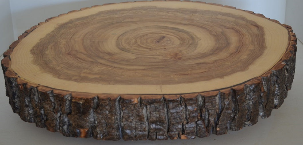 Log Slice Slab for Cake Stand, Cutting Board, Food Serving, or Center Piece, NO Legs, With Bark