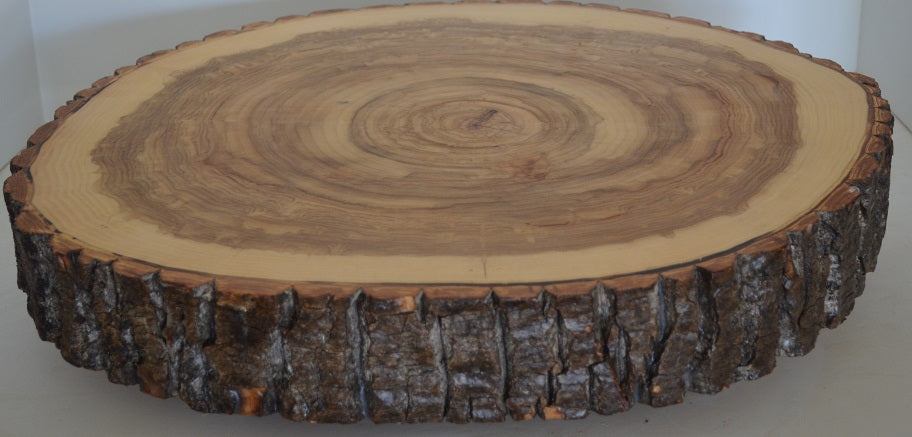 Log Slice Slab for Cake Stand, food Serving or Center Piece With Bark