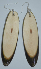 Log Slice Earrings-Oblong