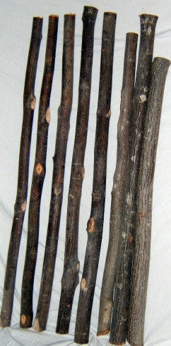 Moose Wood (Striped maple) Poles/Furniture Logs