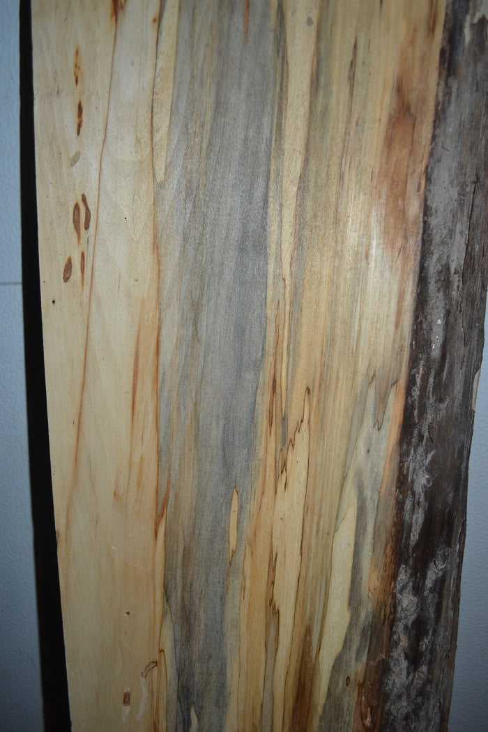 Spalted Aspen Live Edge Slab SA-200 (SOLD)