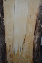 Spalted Aspen Live Edge Plank SA-3