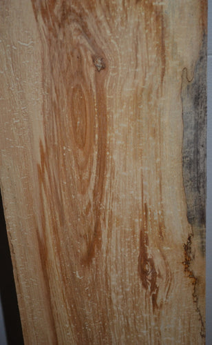 Spalted Maple Plank SM-100   (SOLD)
