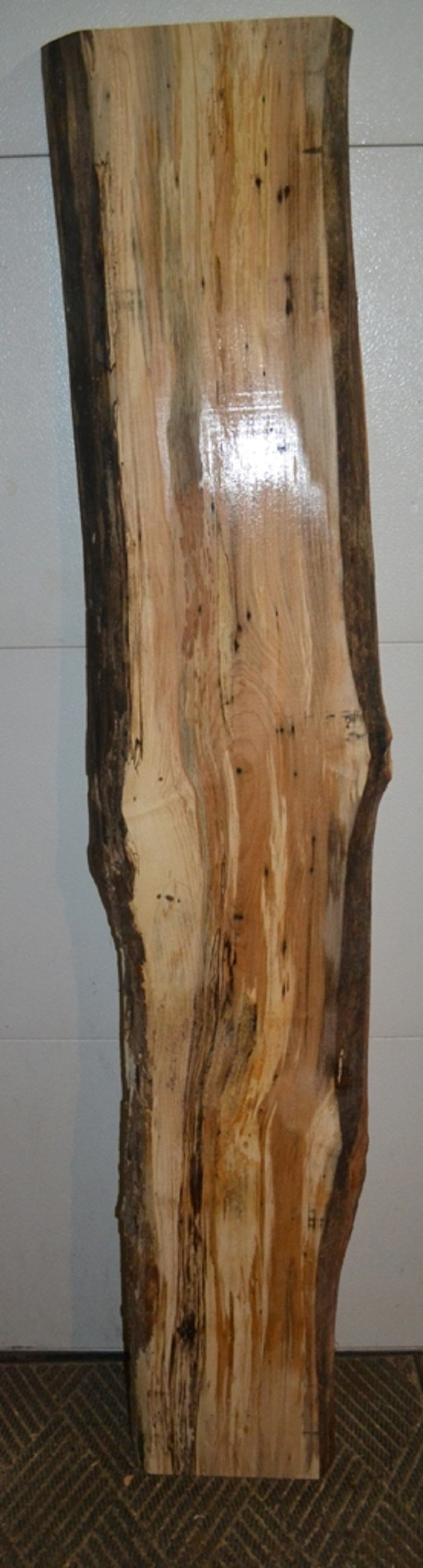 Spalted Maple Live Edge Slab- SM-102 (SOLD)