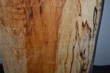 Ambrosia Spalted Maple Live Edge Slab (SMLE-5) (SOLD)