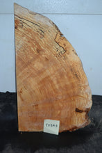 Yellow Birch Spalted Burl Thin Live Edge   YBBM-3
