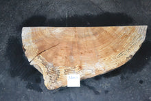 Yellow Birch Flamed Spalted Burl Live Edge  Slab     YBurl-1