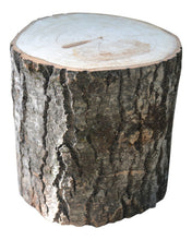 "Aspen Tree Stump Large 10 1/2"" to 12"" Diameter x 4"" to 24""Tall"