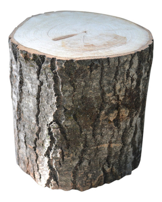 Aspen Tree Stump Large 10 1/2