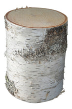 "Birch Tree Stump Large 10 1/2"" to 12""  D x 4"" to 24"" Tall"