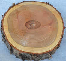 Black Cherry Tree Slice/Log Round