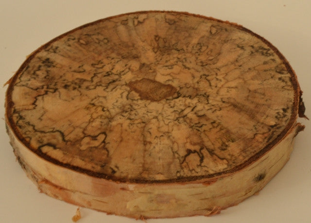 Spalted Birch Log Round/Tree Slice