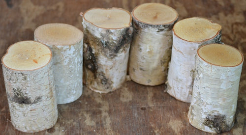 White Birch Mini Logs