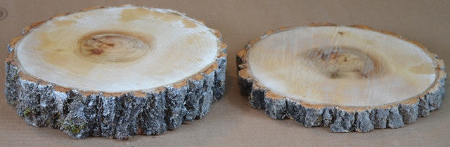 Aspen Log/Tree Rounds Slice/Disk <p>Two- 7