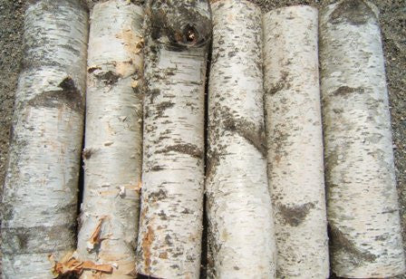 Birch Fireplace Logs 2